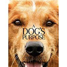 A Dog's Purpose- HD