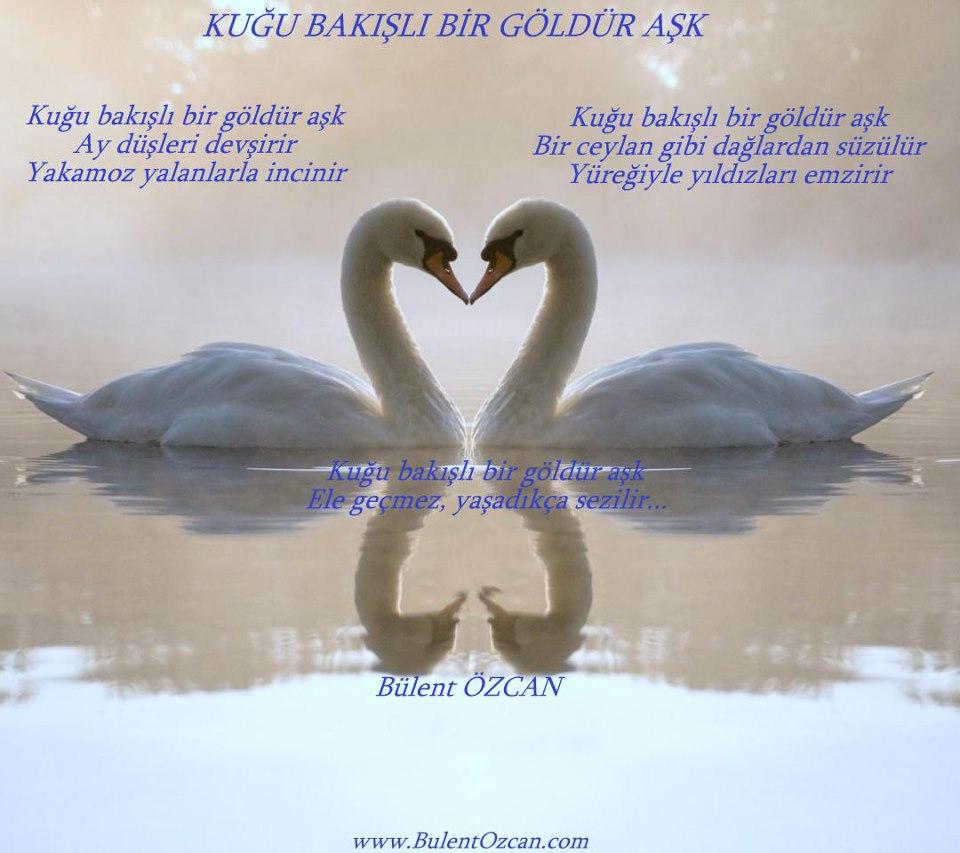 Kuğu Bakışlı Bir Göldür Aşk Bülent Özcan