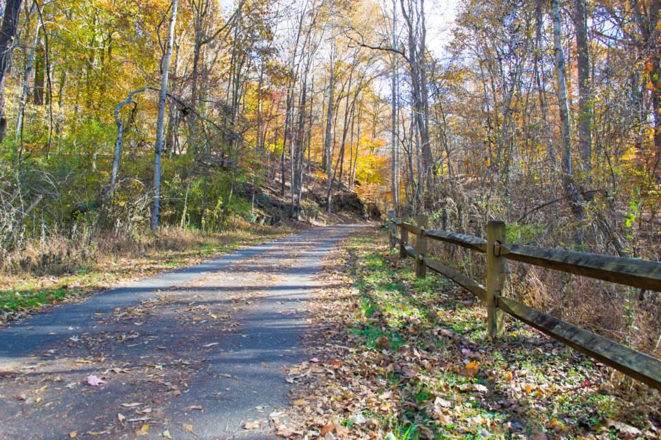 Blackwater Creek Trail (Photo by Studio RAW)