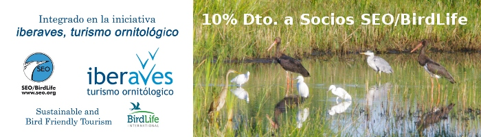 Iberaves, turismo Ornitológico