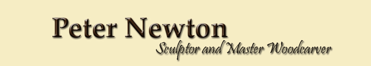Woodcarving Lessons by Peter Newton