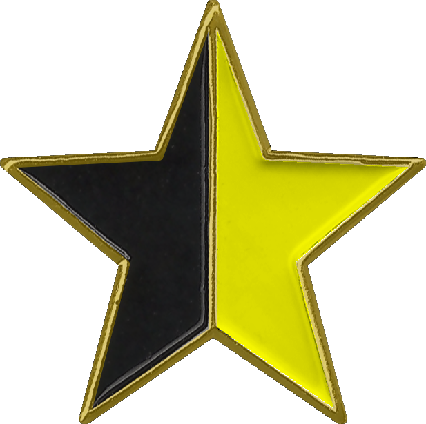 Black and Yellow Star Pin