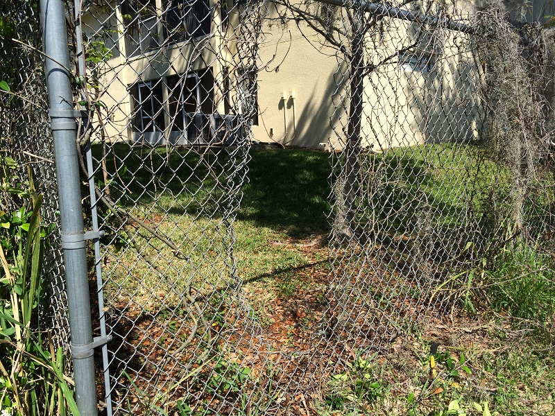 Damage Chain link fence, Orlando
